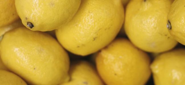 Dans quelques mois la Fête du Citron !